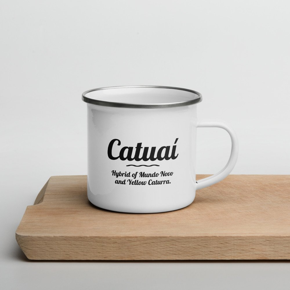 rsync backup files over ssh catuai coffee