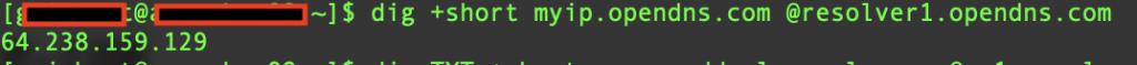 Find Public IP Address using Linux